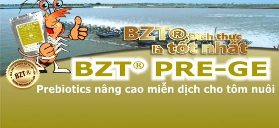 BZT PRE