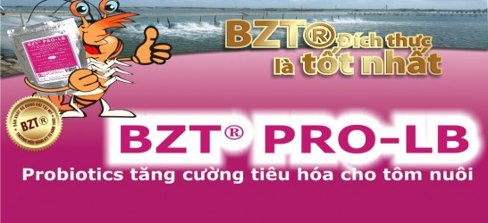 BZT PRO
